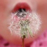Primed u terapiji alergijske astme