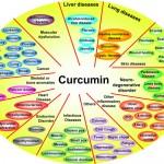 Dejstvo kurkume