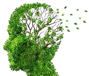 Alchajmerova bolest i demencija