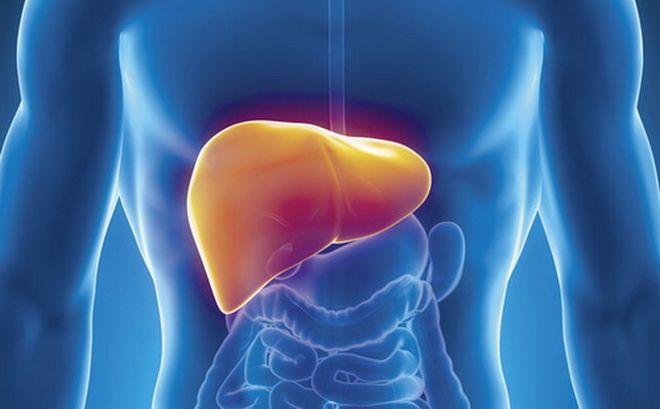 Masna jetra – ne boli, a ubija.